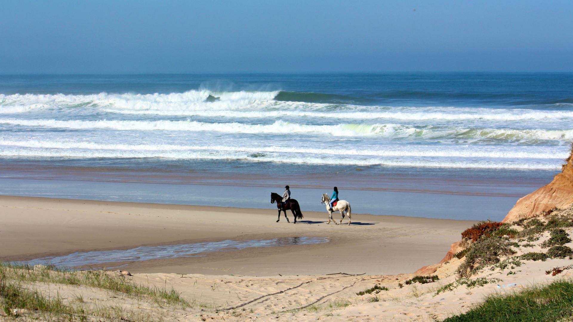 5-cavalos-na-praia