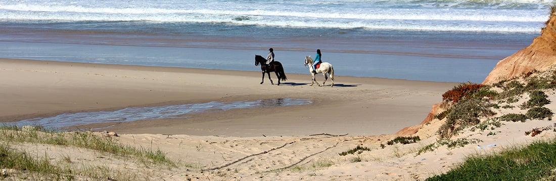 CavalosPraia